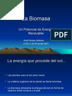 La Biomasa300