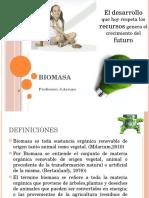 biomasa-101114102637-phpapp02