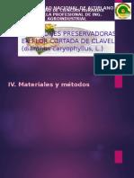 Soluciones Preservadoras en Flor Cortada de Clavel