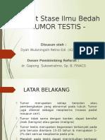 Slide Referat - Tumor Testis