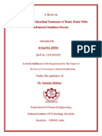 Plant Design for Microbial Treatment of Waste Water With Advanced Oxidation Process