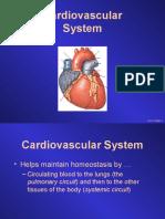 3 Cardiovascular