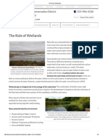 The Role of Wetlands