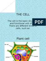 THE CELL.pptx
