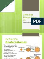 Biología presentación