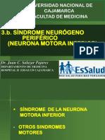 Grandes Síndromes Neurológicos- Neurona motora inferior