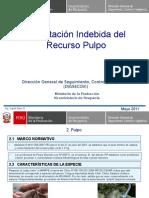 Presentacion Pulpo