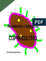 2015-1e- COPROCULTIVO [Modo de Compatibilidad]