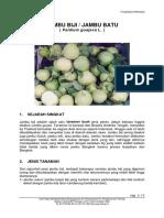 jambu_biji.pdf
