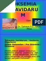 TOKSEMIA GRAVIDARUM