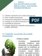 Tema 3 Societăţile Transnaţionale