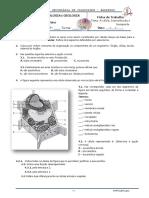 Célula Biomoleculas e Transporte.pdf