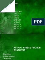 Anti InfectivesRLE1