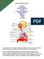 APARATO RESPIRATORIO3.docx