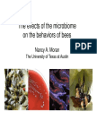 Nancy Moran - Effects of the microbiome on the behavior of bees