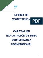 Anexo Resolución N°230-2016-SINEACE CDAH-P.pdf