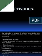 1 Tejidos