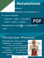 Prinsip Metabolisme