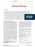 cell signaling pathway.pdf