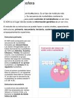 ADN Proyecto Biosfera