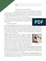 campo electrostático.pages