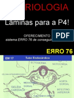 Laminas p4