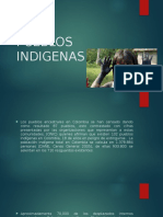 Pueblos Indigenas