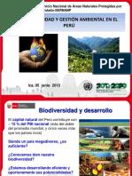 Ejes Estratégicos Gestión Ambiental Ppt (1)