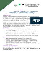 Diptico Inclusion Digital Aneae