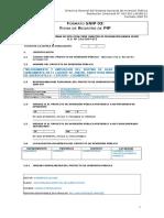 FormatoSNIP03FichadeRegistrodePIP VF