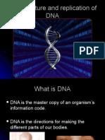 02  dna- replication  matt