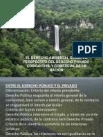 DERECHO AMBIENTAL EN EL CODIGO CIVIL.pdf