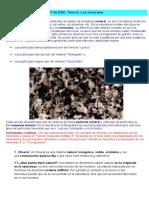 Minerales y Rocas (Aula 2005)