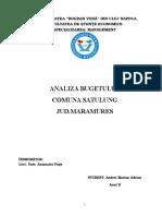Analiza Buget Comuna Satulung