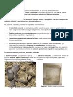 Minerales y Rocas (Quijano)