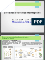 Curs 2 Metabolismul ADN-ului
