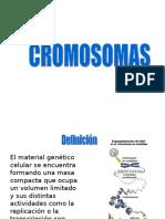 Cromosmas y Cromatina