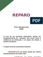 Reparo - 2008