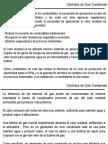 Ciclo_Combinado.pdf