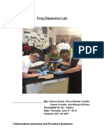 frogdissectionlab