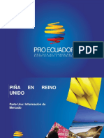 Proec Ppm2013 Piña Reinounido i