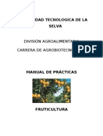 25.3 Manual de Practicas de Fruticultura