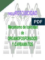 PLAGUICIDAS NEUROTOXICIDAD.pdf