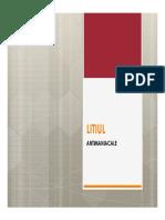 LITIUL+stabilizatoarele dispozitiei_2016.pdf