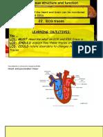 Lesson 22 ECG Traces
