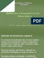 Definição o e Importância Da Silvicultura Florestal