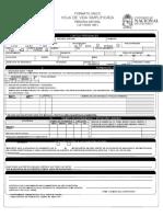 Formato H.v. Simplificado BECARIOS(1)