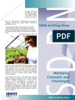 Final Well Being Policy Briefing