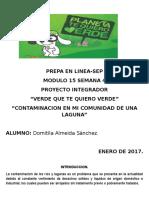 Almeida Domitila M15S4 Pi Verdequetequieroverde