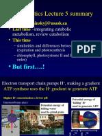 Bioenergetics 050307